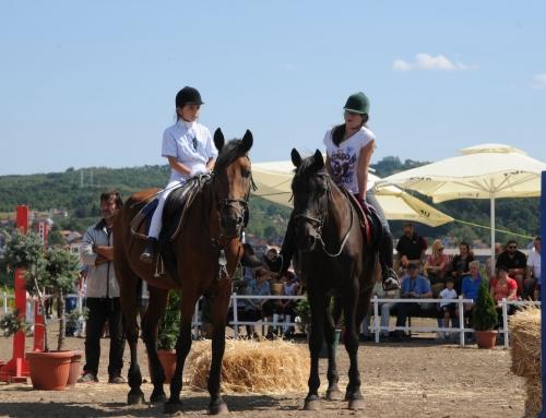 Izložba konja i takmičenje u preponskom jahanju
