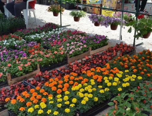 Otvoren Sajam Hortikulture 2019