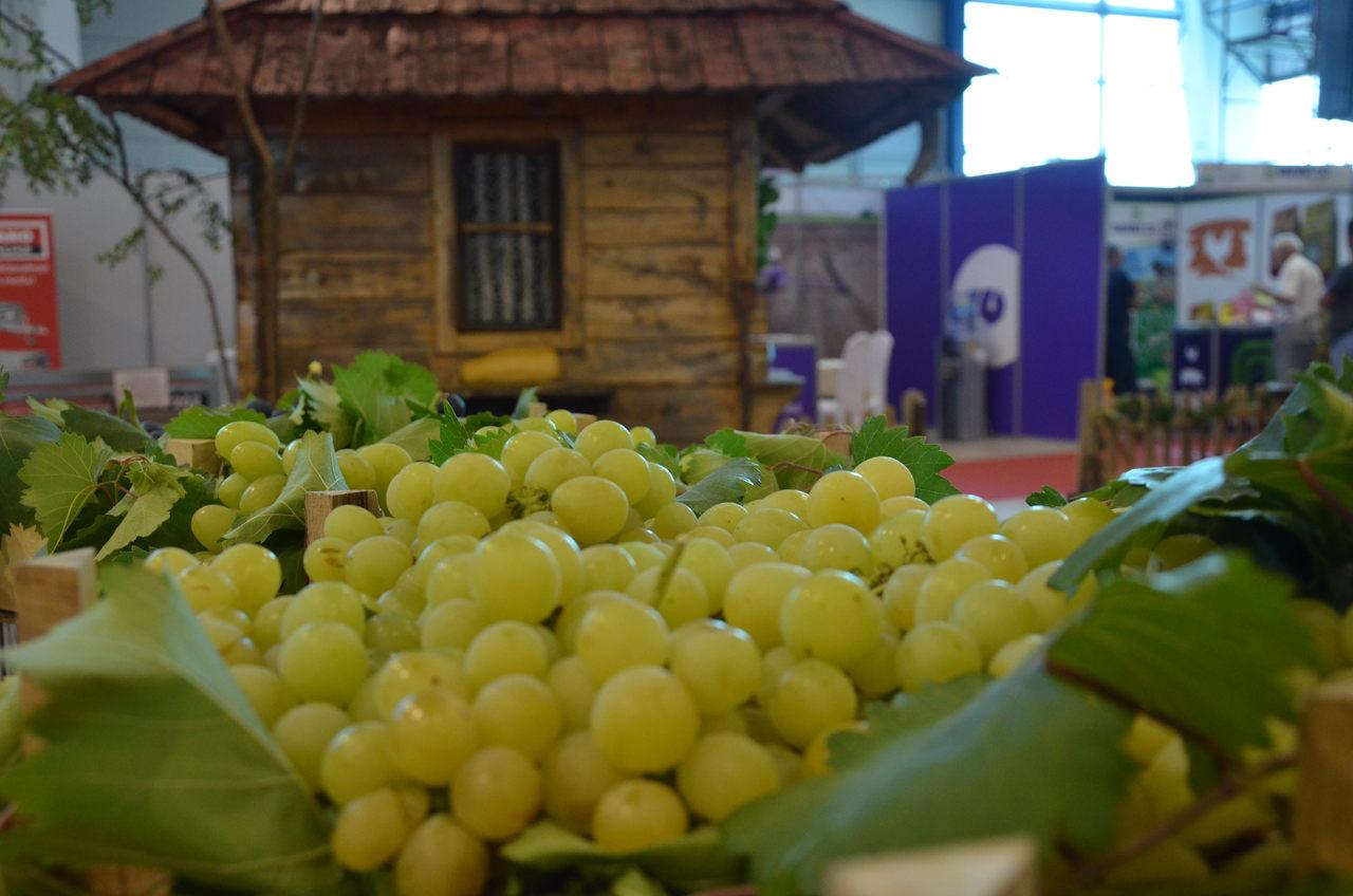 Sajam poljoprivrede 2019 - Kragujevac